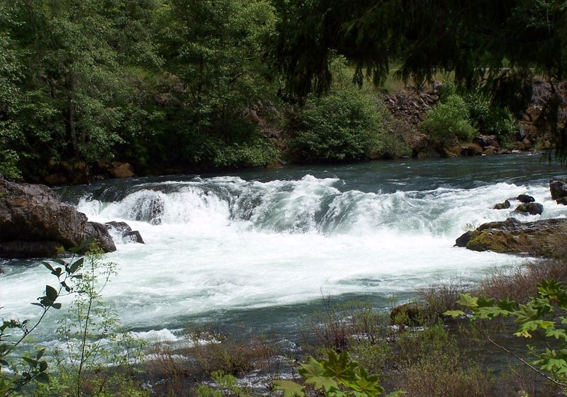 fishinNorthUmpqua